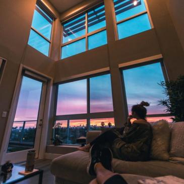 Kotoilu – uusi muoti-ilmiö kotihiirille